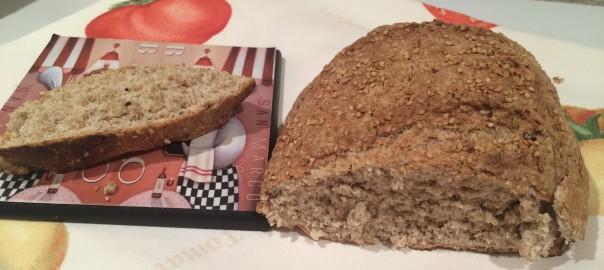 Pan integral multisemillas